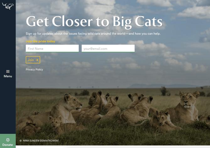 Exemplo da Panthera