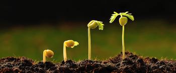 Por que sua empresa precisa de um sistema de CRM para crescer
